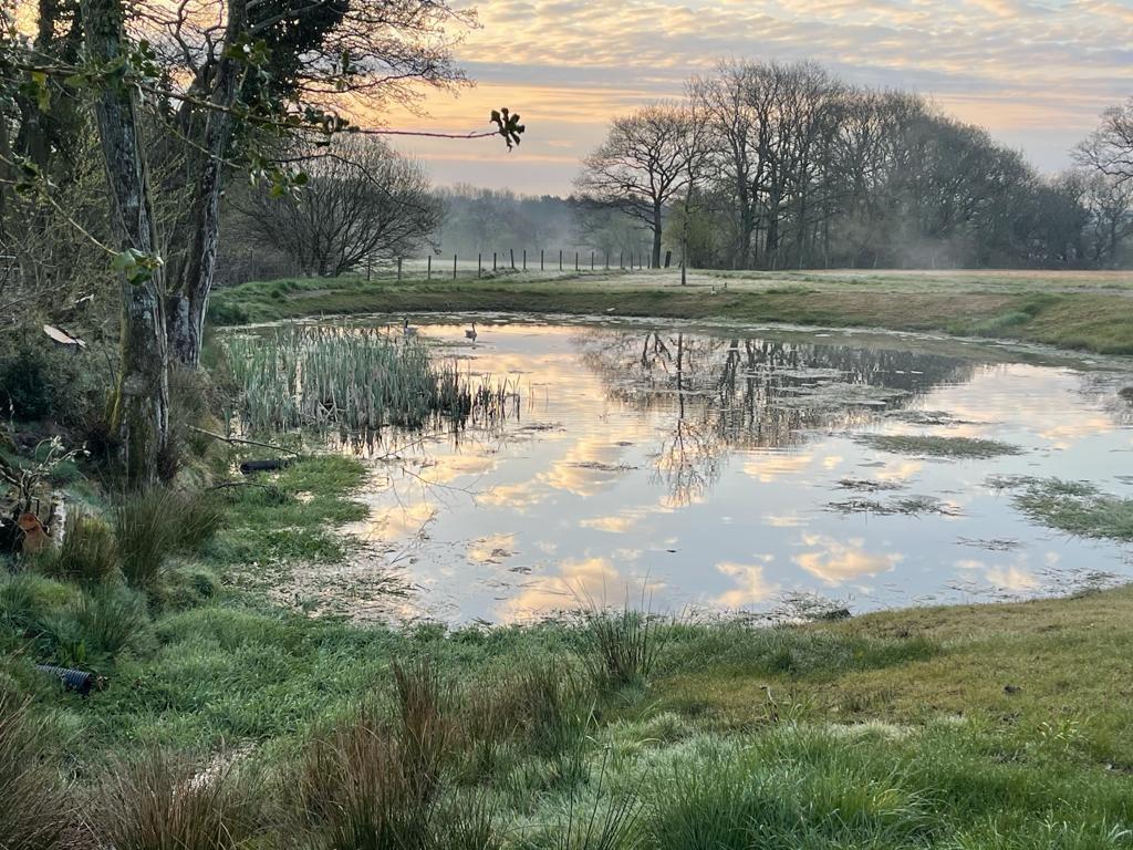 gwaun wen Pond